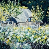 White Roses and Thatched Cottage
